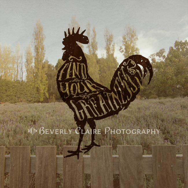Find Your Greatness Rooster with Vintage-Style Typography