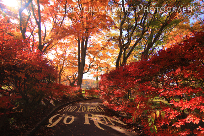 Find Yourself Go Run Autumn Runners Motivational