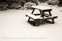 Winter at the Park with a Snow-Covered Table