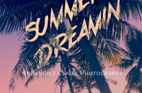 Tropical Island Summer Dreamin'