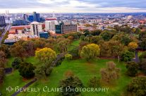 Fall Colors at Flagstaff Gardens in Melbourne