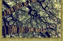 Branches of a Big Oak Tree A Poem Lovely as a Tree