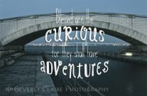 Blessed Are The Curious Adventures Bridge