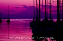 Pink Sunset with Yacht Silhouttes